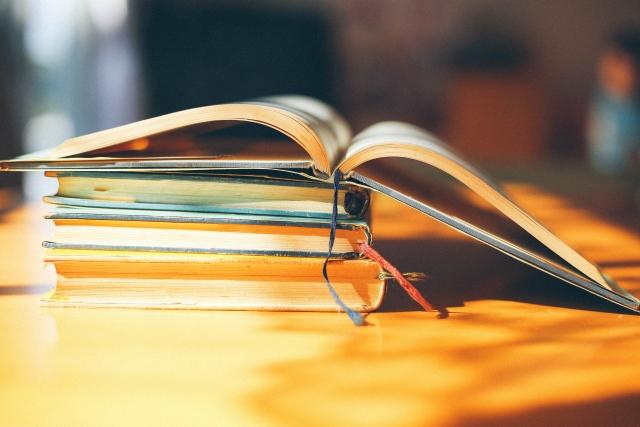 書評メディアわたしの本棚の運営報告(6月度)アドセンス、アフィリエイト収益は?